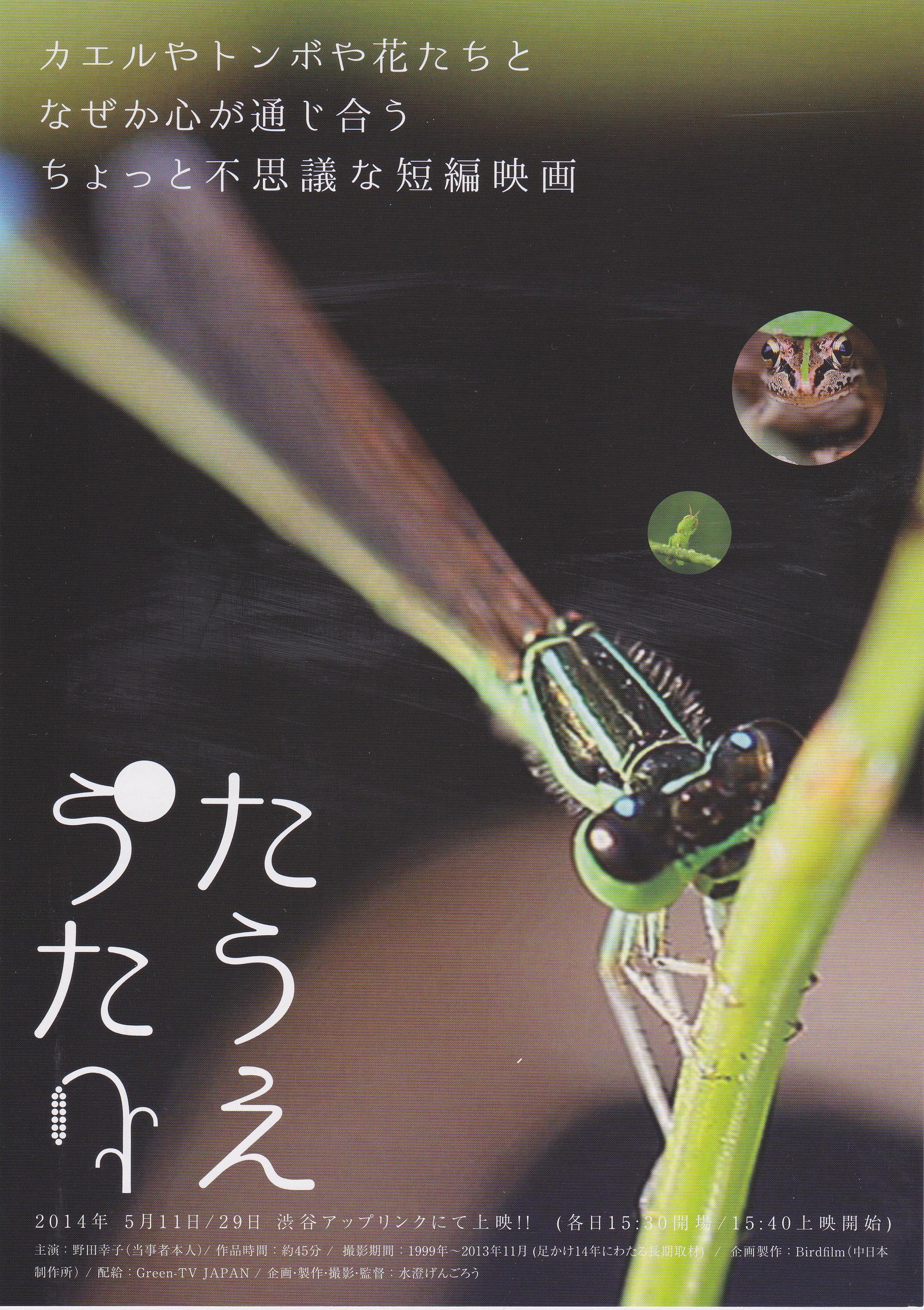 「たうえうた」チラシ (1)